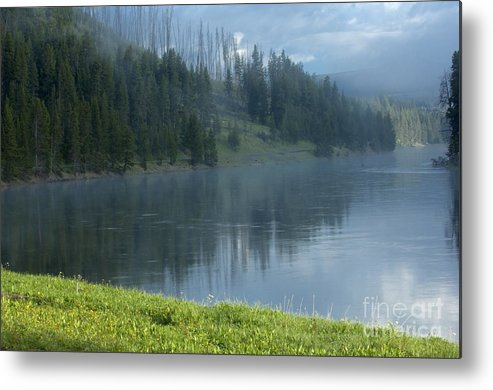 Bronstein Metal Print featuring the photograph Lifting Fog On The Yellowstone by Sandra Bronstein