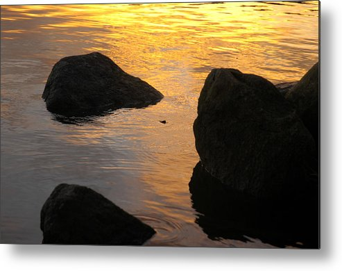 Sunset Metal Print featuring the photograph Liquid Gold by Darcy Dekker