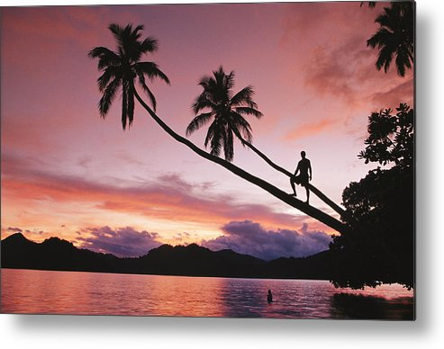 Pacific Islands Metal Print featuring the photograph Man, Palm Trees, And Bather Silhouetted by Mark Cosslett