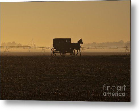 Amish Metal Print featuring the photograph Morning Fog by David Arment