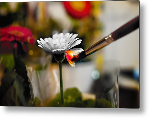 Horizontal Metal Print featuring the photograph Painting Flowers With Paint Brush by by Carlos Cossio