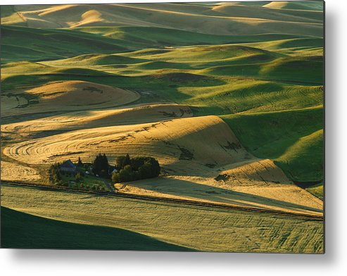 Horizontal Metal Print featuring the photograph Palouse Hills by Piriya Photography
