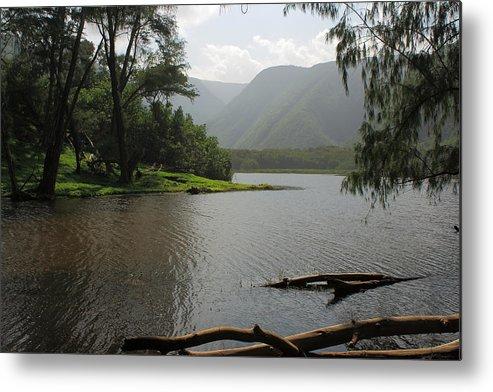 Hawaii Metal Print featuring the photograph Pololu Valley Off Awini Trail by Scott Rackers