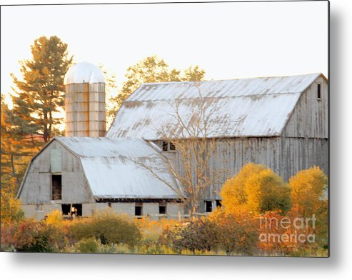 Barn Metal Print featuring the photograph Quiet Country by Joe Jake Pratt