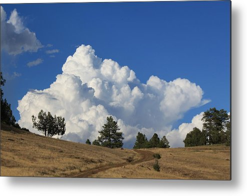 Cloud Metal Print featuring the photograph Road To The Clouds by Amara Roberts