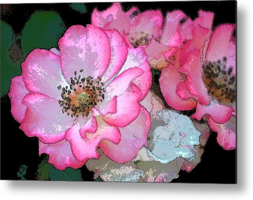 Floral Metal Print featuring the photograph Rose 129 by Pamela Cooper
