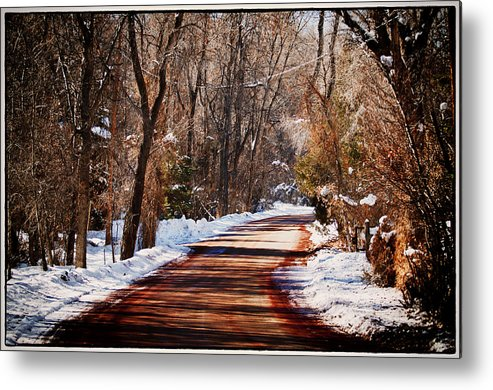 Road Metal Print featuring the photograph Shadowy Path by Lisa Spencer