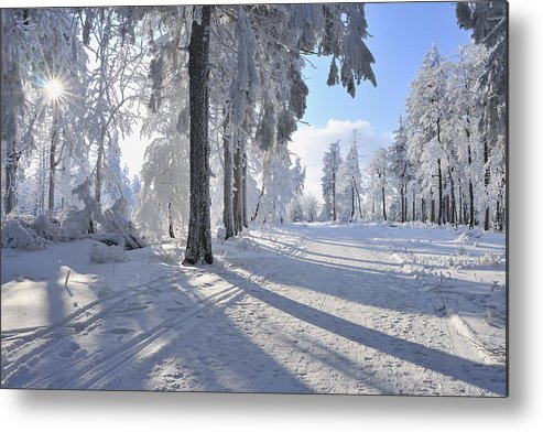 Horizontal Metal Print featuring the photograph Snow Covered Path, Rennsteig, Grosser Inselsberg, Brotterode, Thuringia, Germany by Raimund Linke