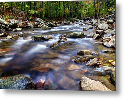 Stream Metal Print featuring the photograph Stream by Mitch Cat