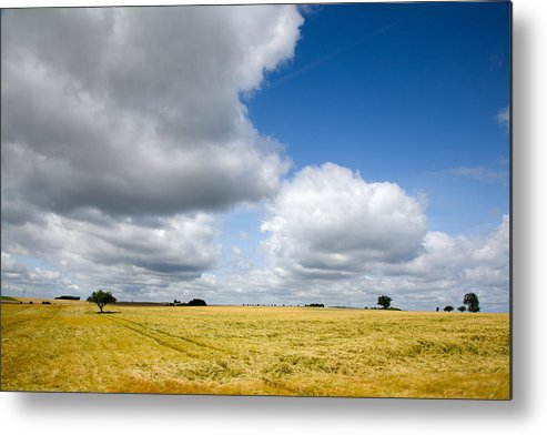 Borg Metal Print featuring the photograph Summer In Saarland by Ian Middleton