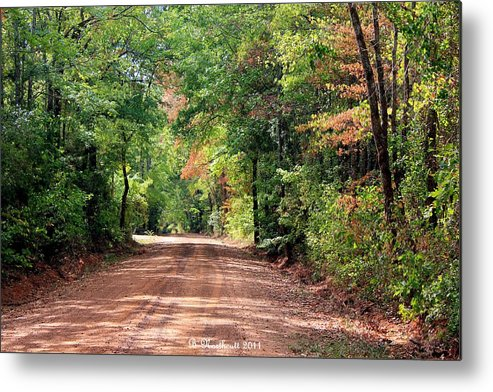 Landscape Metal Print featuring the photograph Sunlight Intersection by Betty Northcutt