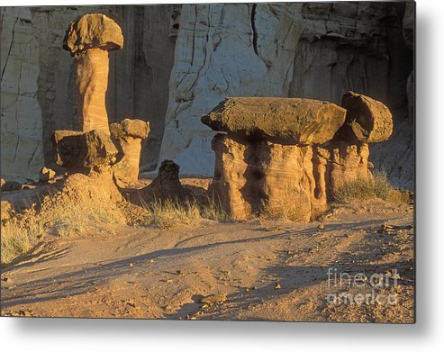 Sandra Bronstein Metal Print featuring the photograph Sunset In Paria Canyon Wilderness by Sandra Bronstein
