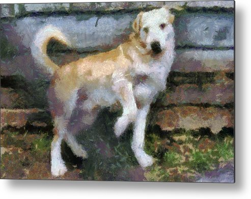 Nature Metal Print featuring the painting The Dog by Odon Czintos