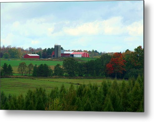 Farm Metal Print featuring the photograph The Farm by Beverly Kobee