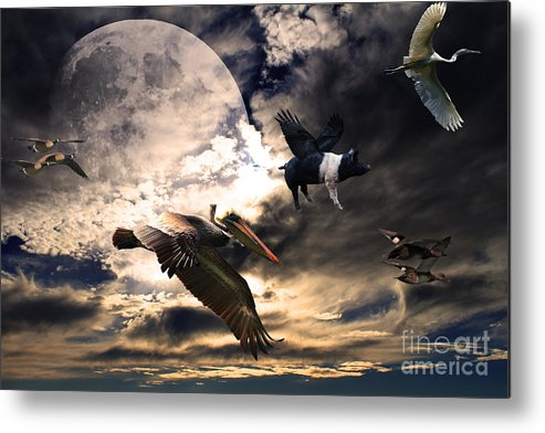 Wingsdomain Metal Print featuring the photograph The Great Migration . Full Color by Wingsdomain Art and Photography