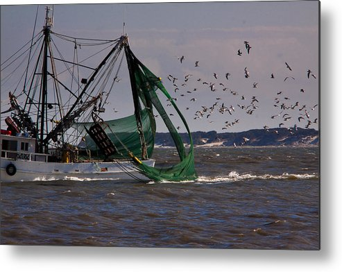 Seascape Metal Print featuring the photograph the Haul by Michael Ray