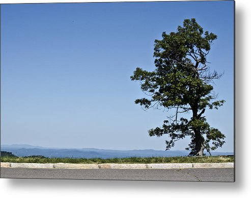 Landscape Metal Print featuring the photograph The Lonely Tree by Mark Stidham