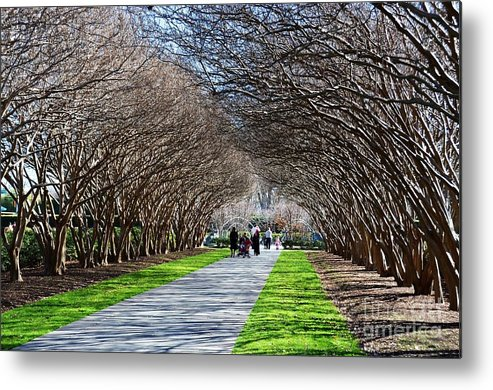 Arboretum Metal Print featuring the photograph The Path by Debbi Granruth