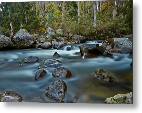 East Kiewa River Metal Print featuring the photograph The River Wild by Mark Lucey
