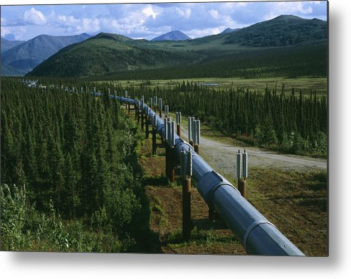 North America Metal Print featuring the photograph The Trans-alaska Pipeline Runs by Melissa Farlow