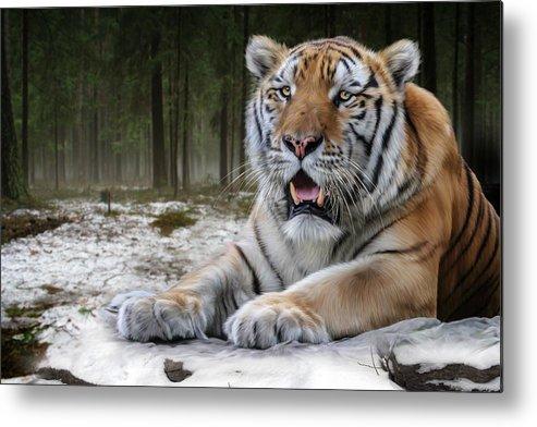 Tj Metal Print featuring the digital art TJ by Big Cat Rescue
