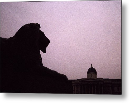 Lion Metal Print featuring the photograph Lion Of London by Shaun Higson