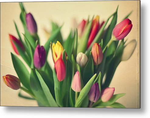 Horizontal Metal Print featuring the photograph Twenty Colorful Tulips by Photo by Ira Heuvelman-Dobrolyubova