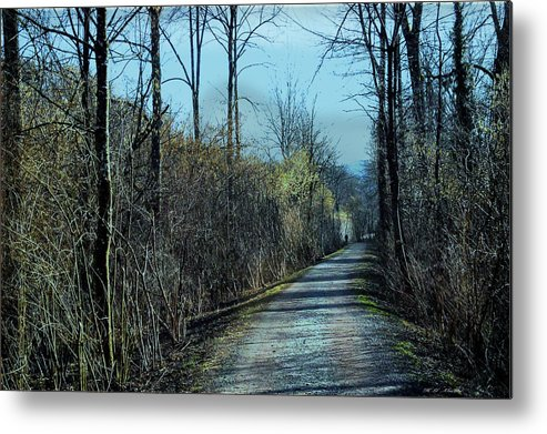 Walking In The Shadows Metal Print featuring the photograph Walking In The Shadows by Heinz G Mielke