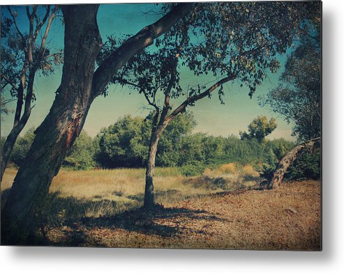 Big Break Regional Shoreline Park Metal Print featuring the photograph When I Was Your Girl by Laurie Search