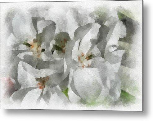 Santa Metal Print featuring the digital art White Geraniums - Watercolor by Charles Muhle