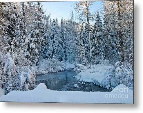 Truckee River Metal Print featuring the photograph Winter On The Truckee River by Mitch Shindelbower