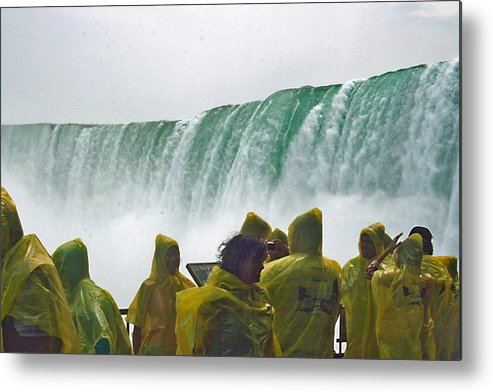 Metal Print featuring the photograph Yellow Coats Two by Alan Rutherford