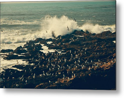Cambria Metal Print featuring the photograph You Came Crashing Into My Heart by Laurie Search