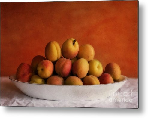 Apricot Metal Print featuring the photograph Apricot Delight by Priska Wettstein
