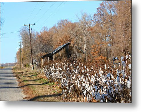 House Metal Print featuring the photograph Back Roads Of Ms by Karen Wagner