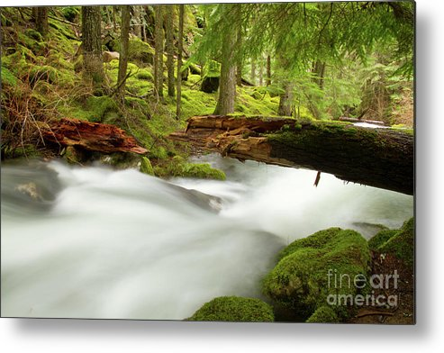 Beauty Creek Metal Print featuring the photograph Beauty Creek by Idaho Scenic Images Linda Lantzy