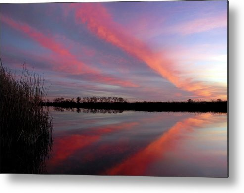 Red Metal Print featuring the photograph Butterfly Cloud Formaiotn No.4 by Terrance Emerson