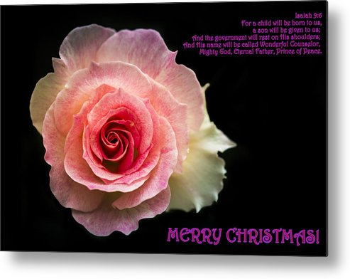 Christmas Metal Print featuring the photograph Christmas Greetings by Jijo George