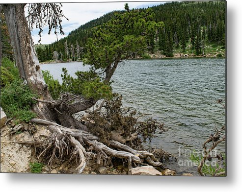 Lake Cleveland Metal Print featuring the photograph Idaho Lake by Steven Eyre Photography