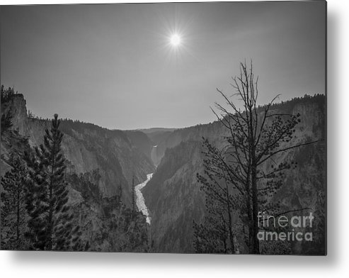 Yellowstone Metal Print featuring the photograph Lower Yellowstone Falls by Michael Ver Sprill