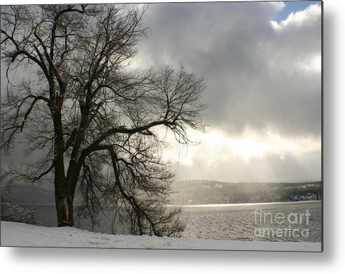 Lake Metal Print featuring the photograph Luminescence by Idaho Scenic Images Linda Lantzy