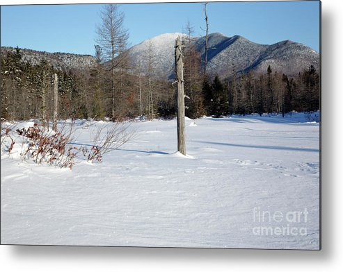 White Mountain National Forest Metal Print featuring the photograph Mount Carrigain - White Mountains New Hampshire Usa by Erin Paul Donovan