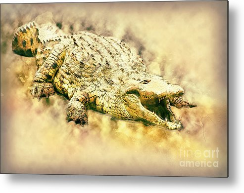 Nile River Metal Print featuring the photograph Nile River Crocodile by Humorous Quotes