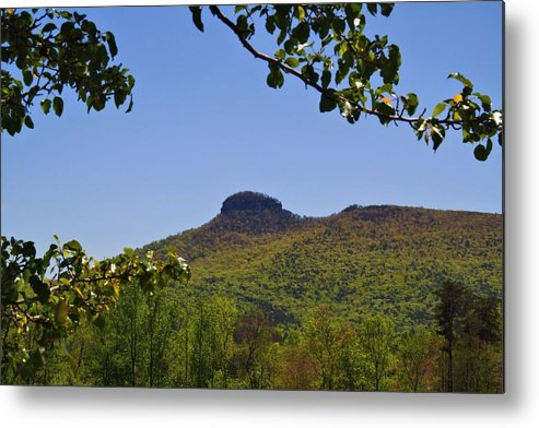 Pilot Mountain Metal Print featuring the photograph Pilot Mountain In Spring Green by Kathryn Meyer