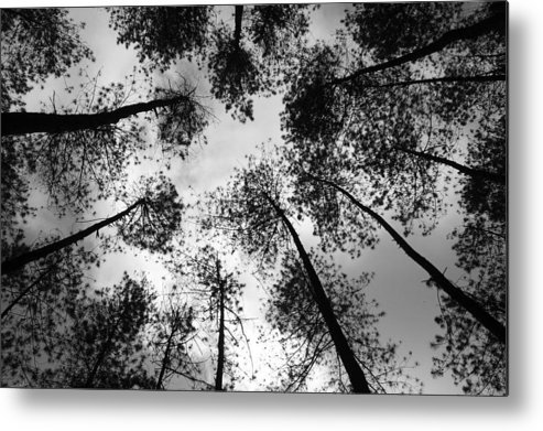 Darkness Metal Print featuring the drawing See The Darkness by Yudhit Hadi