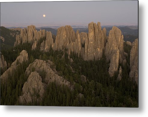 Nobody Metal Print featuring the photograph The Needles Protrude From Forests by Phil Schermeister
