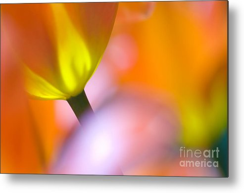 Tulips Metal Print featuring the photograph Tulips by Silke Magino