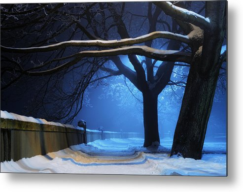 Winter Metal Print featuring the digital art Winter by Zia Low