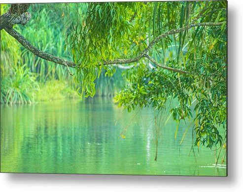 Nature River Metal Print featuring the photograph Nature			 by Sainuddeen Alanthi