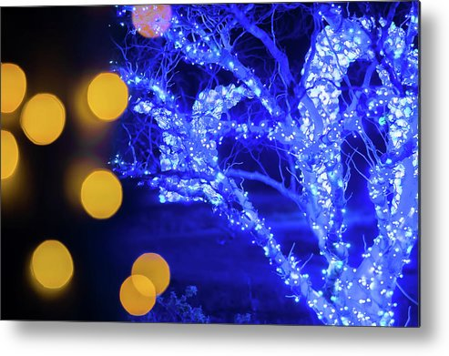 Lights Metal Print featuring the photograph Christmas Season Decorations And Lights At Gardens by Alex Grichenko